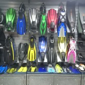 Our Fins Collection